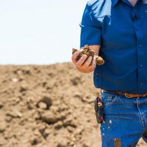 dirt+dryer-dirt-37