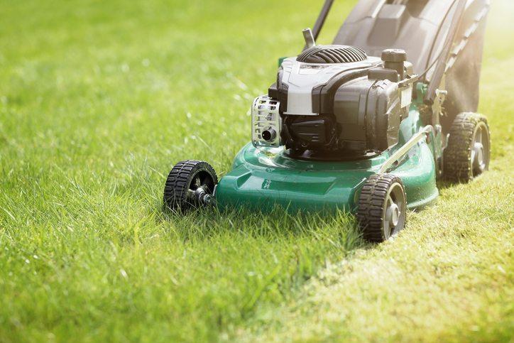 Mowing Grass - Cool Season Grass